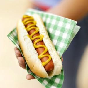 Hand Holding Hot Dog in Napkin